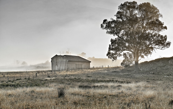 icely-road-barn-in-fog