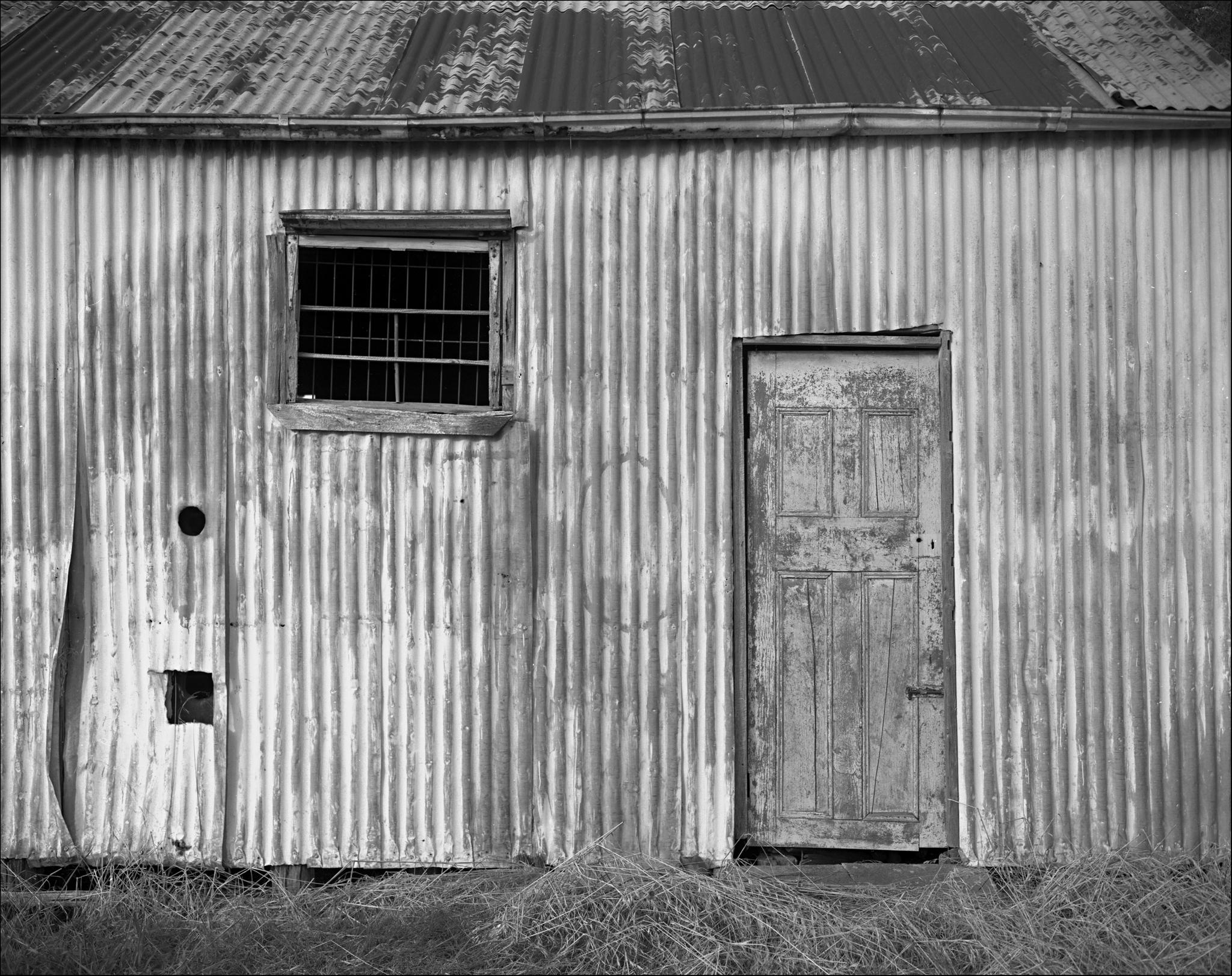 shed web