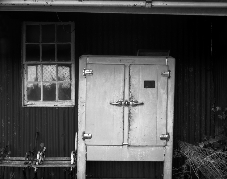 outside cashen hut2028 FINAL